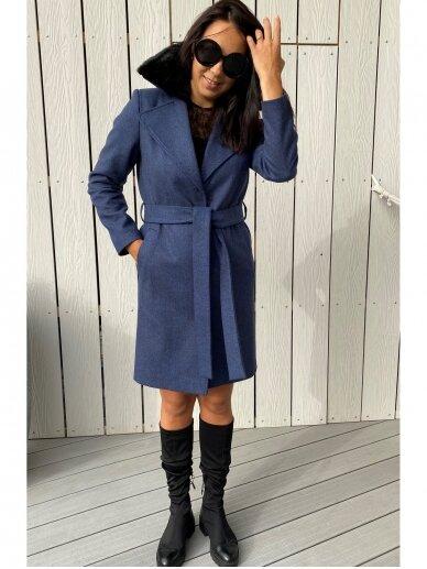 Paltas   Blue 4